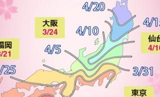 2017年の桜の開花・満開予想が早くも発表!今年は平年並み又は早め