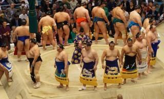 大相撲で場内がスーパー盛り上がる「金星(きんぼし)」は、白星と何が違う?