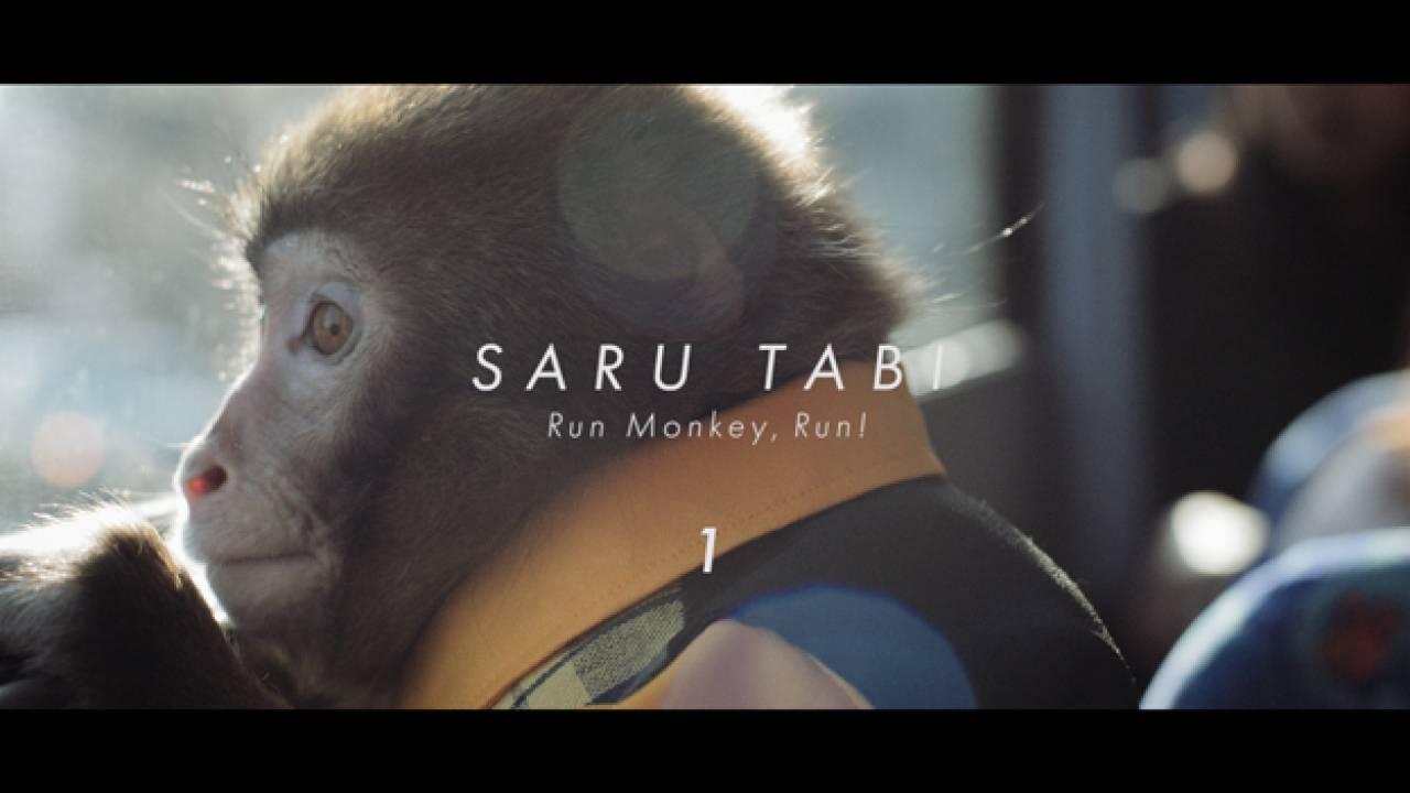 お猿の表情が愛らしい!大分市PR映像は可愛くも本格的なムービー「SARU TABI」