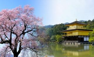 大道具仕掛けも見もの!桜の季節に見たい歌舞伎「金閣寺」はディズニーもびっくりのファンタジー