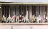 幕府公認、江戸時代の吉原遊郭はこうして誕生した!気になる吉原の歴史を紹介