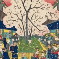 吉原ならではの構造。江戸時代の吉原の中ってどうなっていたの?