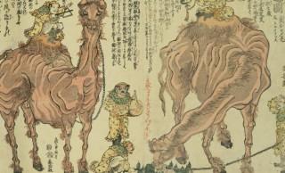 江戸時代アニマル事情(3)何だコイツ?落語の題名にもなった珍獣・ラクダ