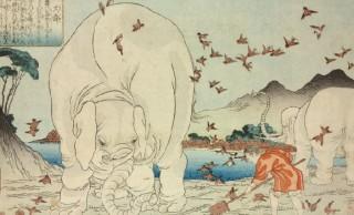 江戸時代アニマル事情(1)皇室も夢中になった江戸時代の珍獣ブーム