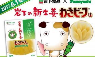 わさび味の生姜?もうわけわからんw 岩下の新生姜がコラボ商品「岩下の新生姜 わさビーフ味」発売