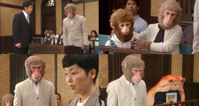 昔話の主人公が訴えられる…Eテレ「昔話法廷」の新作は誰もが知る日本の民話「さるかに合戦」