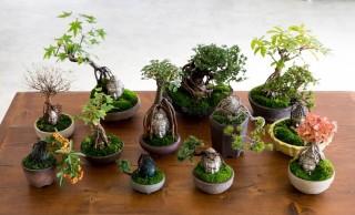 これはオモシロい!仏像と盆栽を融合させた超進化系「BUDDHA BONSAI – 仏像盆栽」