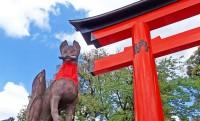 なぜキツネがいるの?赤い鳥居でおなじみ、稲荷神社と狐の秘密、狐がいる理由に迫る!