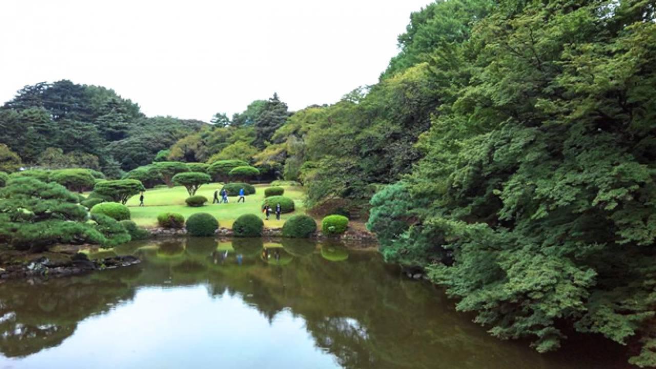 一度は行きたい!異なる様式の庭園が楽しめる新宿御苑の歴史と見どころに迫る