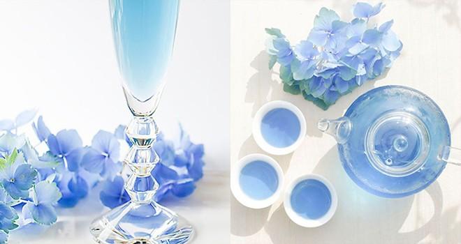 どうゆうこと?幻想的で宝石のような「青い緑茶」がヴィレヴァンから発売