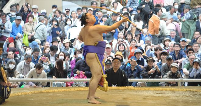 取り組み の 今日 相撲 の