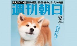 きゃわいい♡ 週刊朝日の表紙に女子フィギュア ザギトワ選手の秋田犬・MASARU!96年の歴史で初