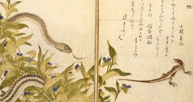 喜多川歌麿「画本虫撰(又は 画本虫ゑらみ)」