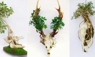 生と死を盆栽アートに。頭蓋骨をつかって生命の循環を表現した「スカル盆栽」がカッコイイ!