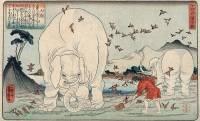 江戸時代にはすでにゾウやラクダが来日、びっくり仰天な姿が見世物として大人気に!