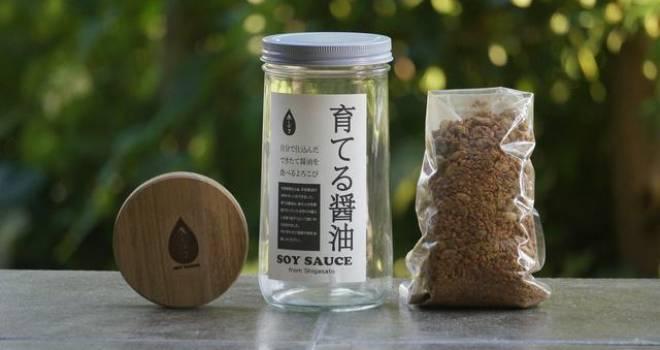 家庭で気軽に醤油蔵♪本格的な醤油をリビングで育てて一番搾り醤油が味わえる「育てる醤油」