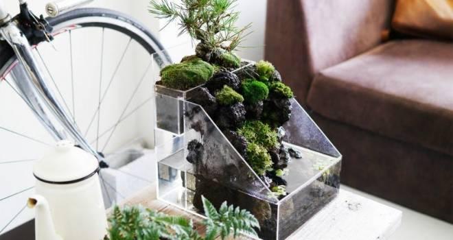 岩や苔をつたう水の音に癒やされる。水の流れる新スタイル盆栽キット「盆水」が登場!