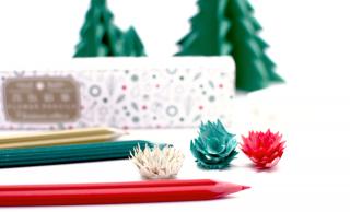 鉛筆の削りカスが花のように美しい「花色鉛筆」にクリスマスエディション登場!