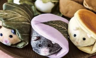 キンクマはきなこ味(笑)もっちもちのハムスターが和菓子そっくりのキーポーチになったよ♡