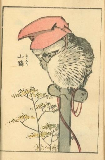 キュートな動物が大集合!葛飾北斎とその一門が描いた生き物の作品集結 ...