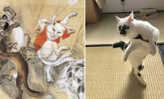 あの猫又は実在した!河鍋暁斎が描いた猫又ポーズをキメる猫ちゃんが激写される!