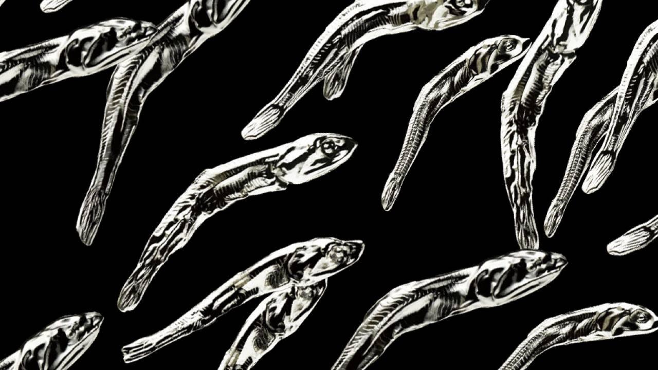 無駄に高級感(笑)煮干しを謎にメタル化したミニフィギュア「メタルナニボシ」