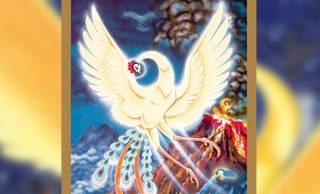 初版完全限定!手塚治虫による不滅の美的世界「火の鳥」のオールカラー画集が初刊行!