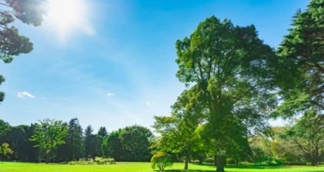 6月の梅雨時なのになんで皐月(五月)晴れなの?その理由は新暦と旧暦のズレから
