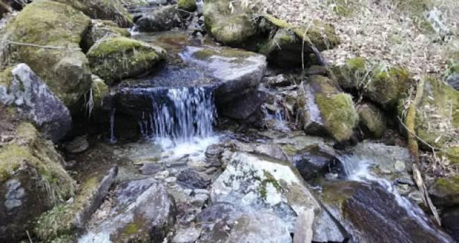 どんな大河も一滴の水から。多摩川138キロの源流「水干」の最初の一滴を求めて