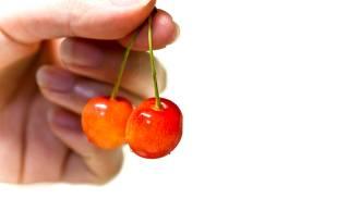 実はサクランボは桜の木の仲間。そして山形県がサクランボの名産地になった理由