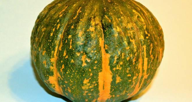 キリシタン大名・大友宗麟によって日本に広められた「かぼちゃ」の語源や歴史を紹介