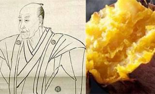 江戸時代に琉球を経て日本にやってきたサツマイモ、江戸っ子にも大人気でした