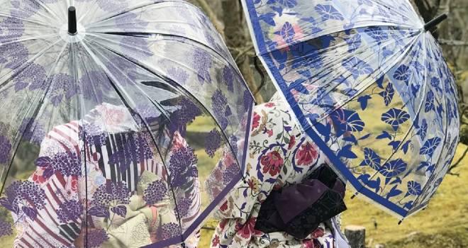 浴衣にもぴったり♪紫陽花、金魚、朝顔の和風デザインが素敵な12本骨のビニール傘が新発売!