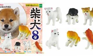 どの柴犬ちゃんが好み?カプセルコレクション「柴犬ミニフィギュア」に可愛い新作が登場!