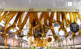 天井から千手観音の無数の手!京都の嵐電で特別運行中の「観音電車」のインパクトったら!