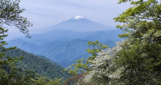 富士山の女人結界が解かれる以前に、男装をし女性で最初に富士山に登った「高山たつ」