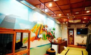 昭和の大衆銭湯をイメージしたユニークな保護猫カフェ「ねこ浴場」がオープン!