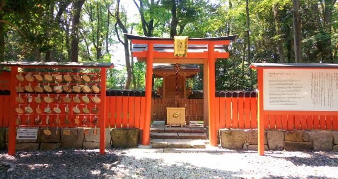 もうすぐラグビーワールドカップ!京都の「下鴨神社」がラグビーの聖地と呼ばれる理由