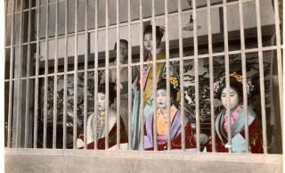 華やかな妓楼の壮絶な裏側!江戸時代の遊女はどんな病気にかかりやすかったの?