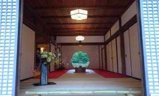 秋も癒しスポット!北鎌倉のあじさい寺「明月院」に紫陽花が多い意外な理由とは?