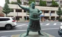 親方の再雇用制度もアリ?相撲の力士や親方って退職後はどうしてるの?
