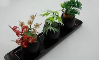 千年先も水引細工を継承したい!全て手作り盆栽水引アートがステキです