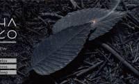 モダンデザインが素敵!まるで葉っぱのような和紙のお香「HA KO」にブラックラインが登場