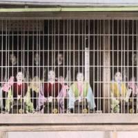 江戸時代、妓楼の「行燈部屋」では病気の遊女を療養させたり支払いの滞った客を閉じ込めていた
