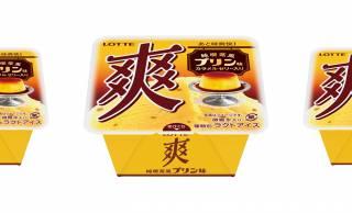 昔ながらの純喫茶のプリンをイメージしたノスタルジックな「爽 純喫茶風プリン味」新発売!
