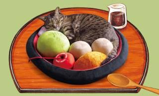 """猫ちゃんがくつろげば""""あんみつ""""の具材になっちゃう「あんみつにゃんこクッション」が超絶カワイイ!"""