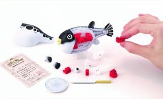 トラフグを解体しながら部位の名称が学べる「一尾買い!!トラフグ解体パズル」が新発売