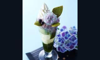見てこの美しさ♪京都・伊藤久右衛門が大人気の「紫陽花パフェ」を今年も提供中!