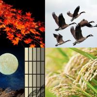 8月の旧称「葉月」は太陰暦に由来。穂張月、紅染月…他にも沢山ある8月の別称を紹介