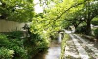 夏の京都はカップル成立率高し!?涼しい・安い!デートコース【南禅寺〜哲学の道編】
